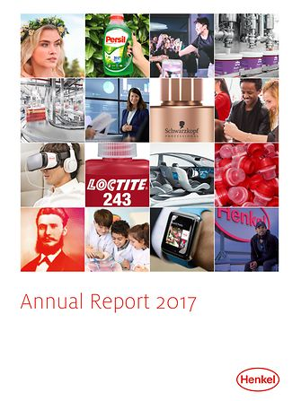 2017年度报告  (封面)